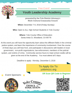 Image of Youth Leadership Academy Flyer, which is a downloadable PDF above the image.